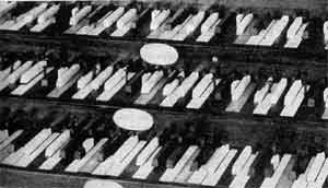 Thomas Perronet Thompson's organ